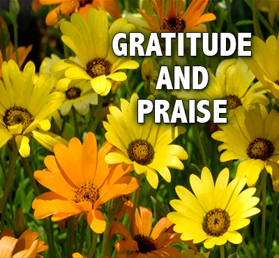 Gratitude and Praise - Positive Thinking Network - Positive Thinking Doctor - David J. Abbott M.D.