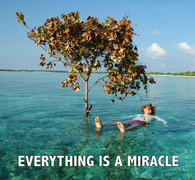 Everything is a miracle - David J. Abbott M.D.