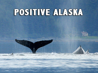 Positive Alaska - Positive Thinking Network - Positive Thinking Doctor - David J. Abbott M.D.