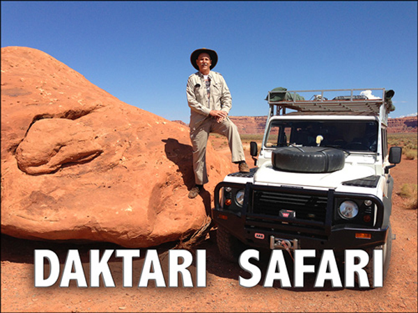 Daktari Safari - Discover the power of a single idea - David J. Abbott M.D.